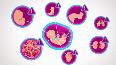 ZERO Alkohol in der Schwangerschaft – Man kann es nicht oft genugsagen!